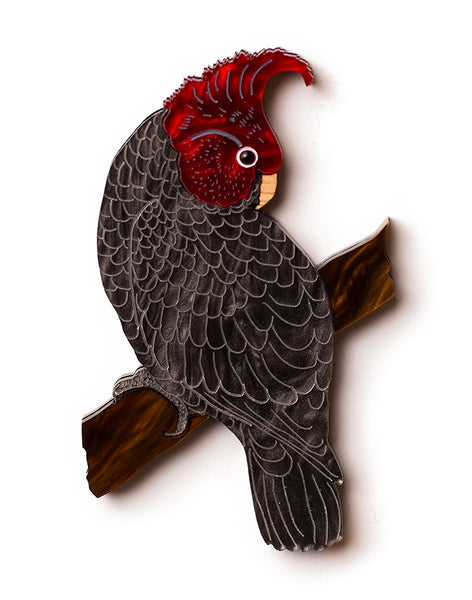 Gang Gang Cockatoo Brooch
