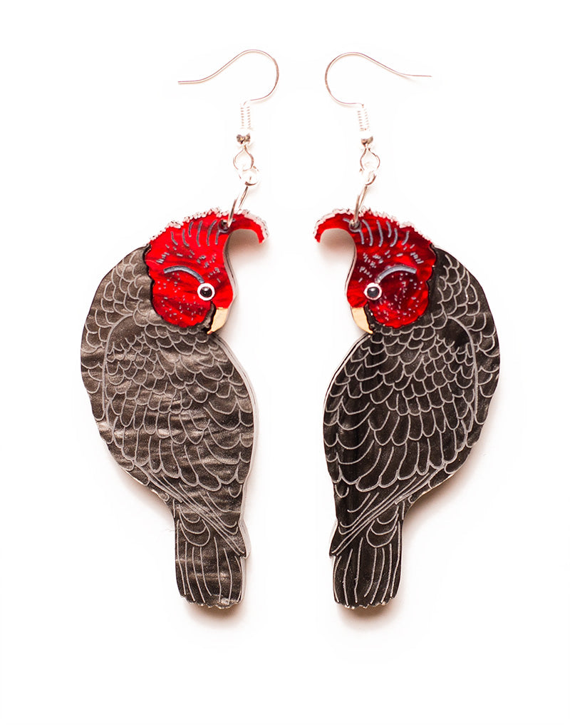Gang Gang Cockatoo Acrylic Earrings