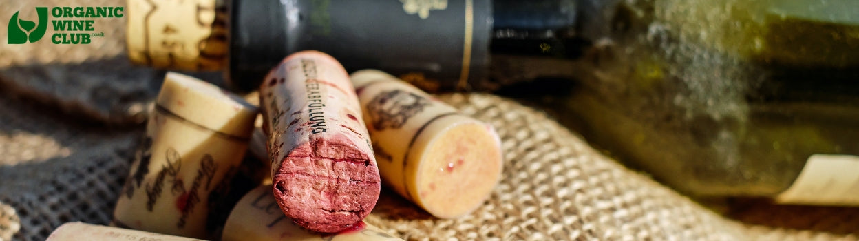Italian wines: organic and natural wines without excessive sulphites from Italy