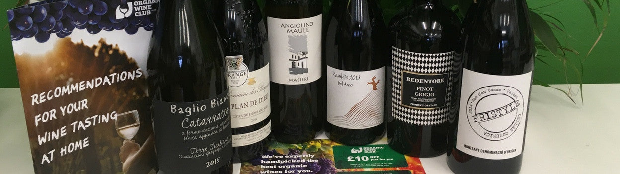 Organic Wine Subscription - Discover Delicious Wines