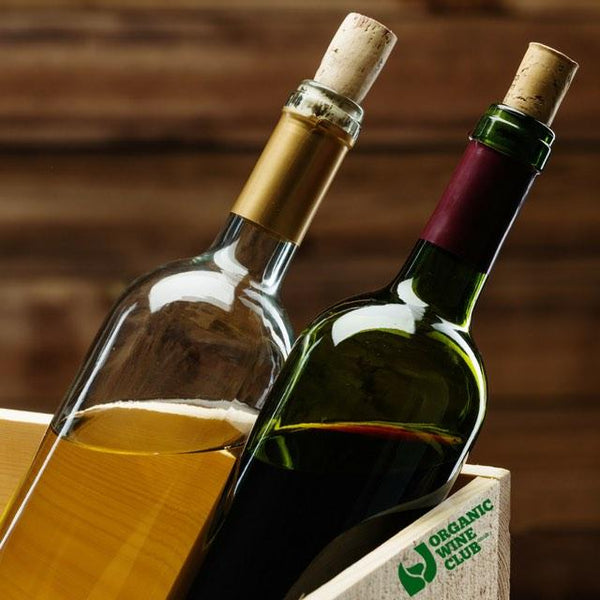 Organic Wine Tasting Plan: 2 Bottles of Bestselling Natural Wines