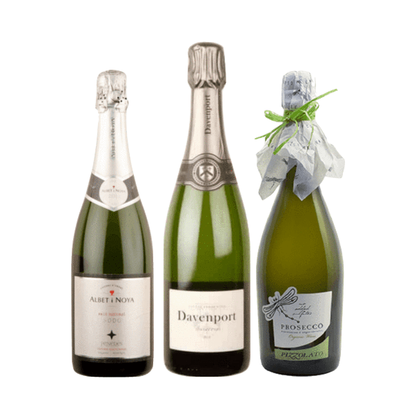 Organic Wine Tasting | 3 Traditional Sparkling Wines