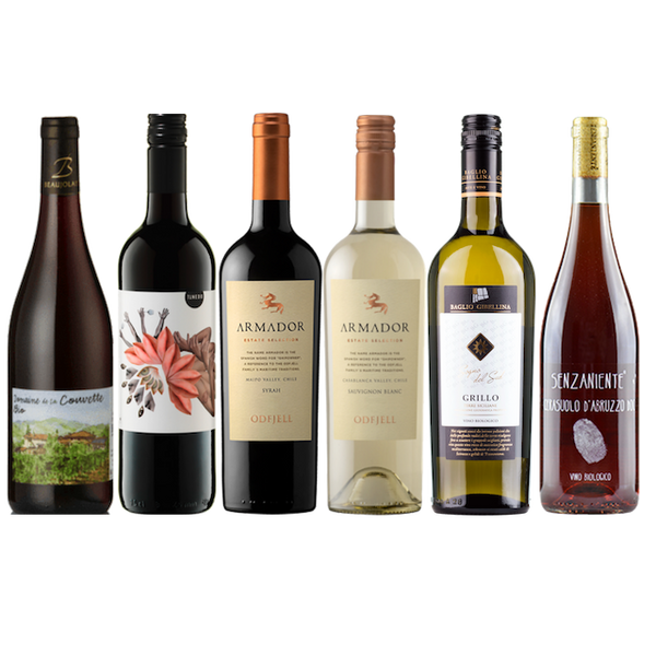 Curious about Organic? | Taster Case of 6 Wines | No Sulphites Added | Biodynamic  | Sugar Free | Vegan *