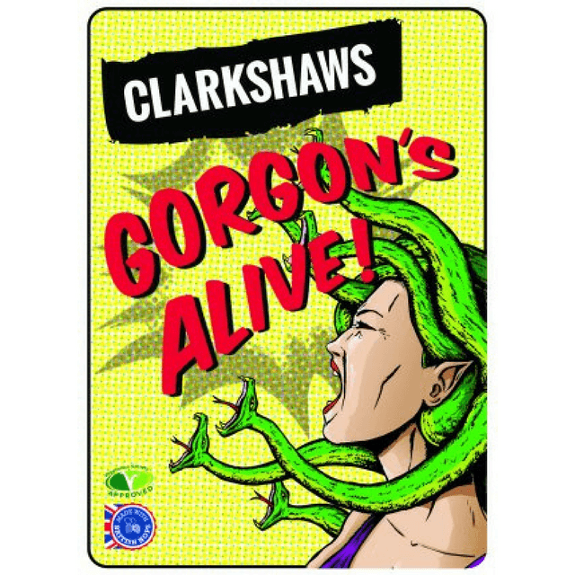 Gorgons Alive! Golden IPA, Clarkshaws, Brixton, UK