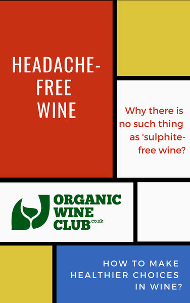 Headache-Free Wine | Book on Sulphites in Wine & Other Additives