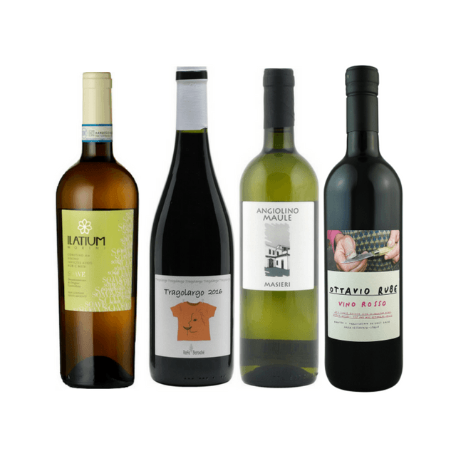Introductory Organic Wine Club Case | 8/12 No Added Sulphites Wines