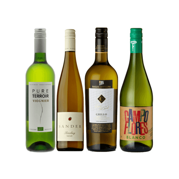 Introductory Organic Wine Club Case | 12 Organic White Wines