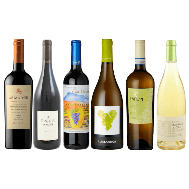 6/12 Gluten Free Wines | Organic Wine | Vegan Wines | Assorted Wine Case
