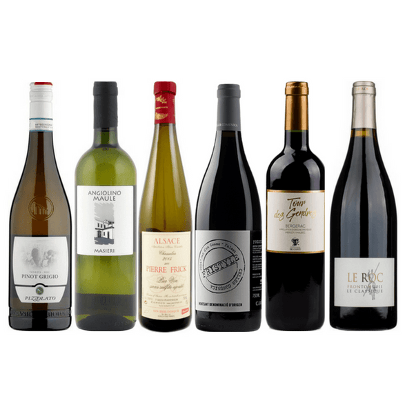 Vegan & Allergen-Free Case | 6 Assorted Organic Wines