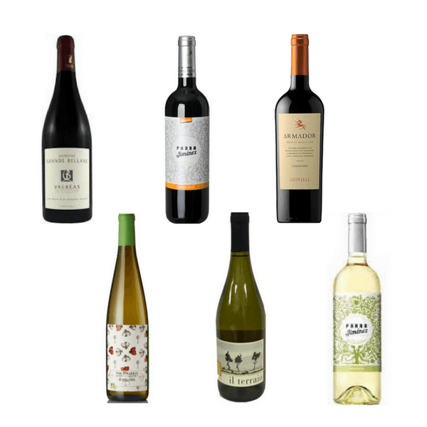 6/12 Biodynamic Wines | Organic Wines | Vegan Wine | Assorted Wine Case