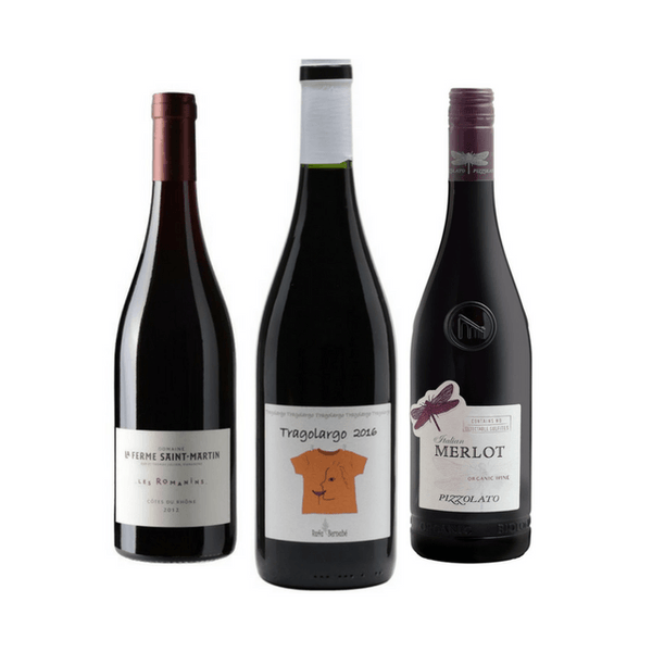 Organic Wine Tasting | 3 Smooth Red Wines | No Added Sulphites
