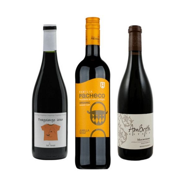 Organic Wine Tasting | 3 Red Wines | Made from Monastrell