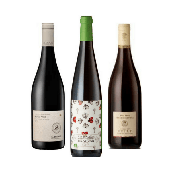Organic Wine Tasting | 3 Red Wines | Made from Pinot Noir
