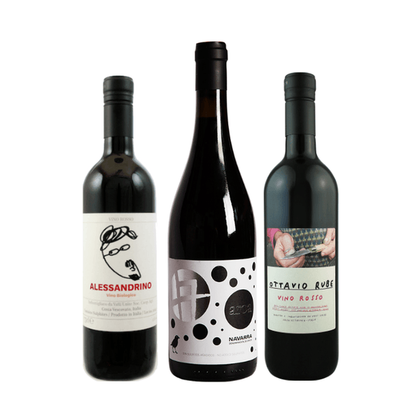 Strictly No Sulphites Added Wine Case | 6 Organic Red Wines