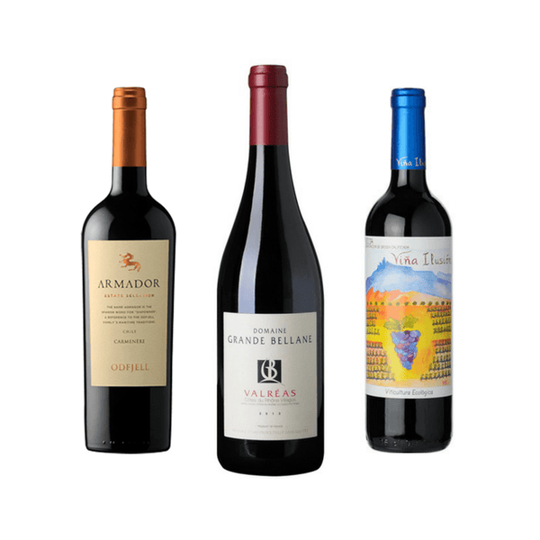 6 Biodynamic Wines | Organic Wine | Vegan Wines | Red Wine Case