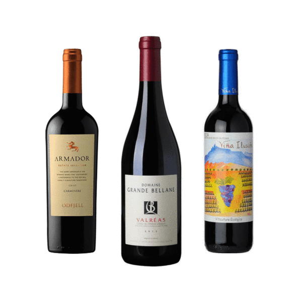 Organic Wine Club Mixed Case | 6 Organic Red Wines | No Sulphites Added *