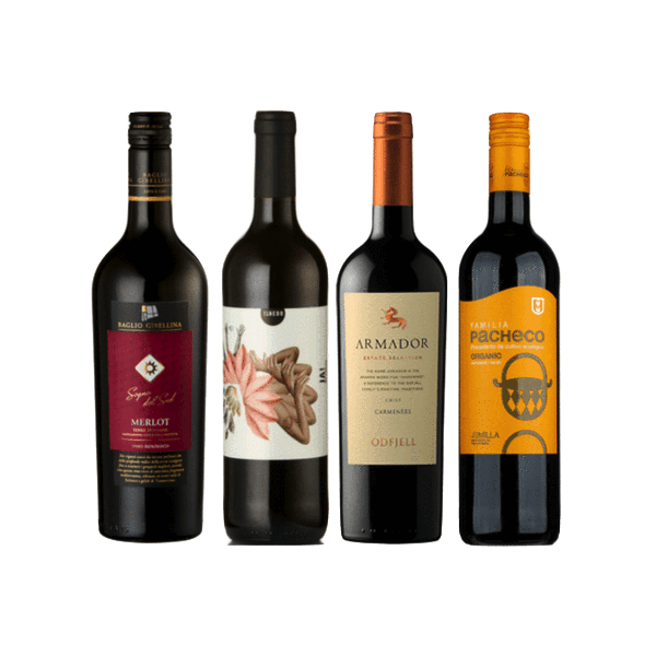 Introductory Organic Wine Club Case | 12 Organic Red Wines