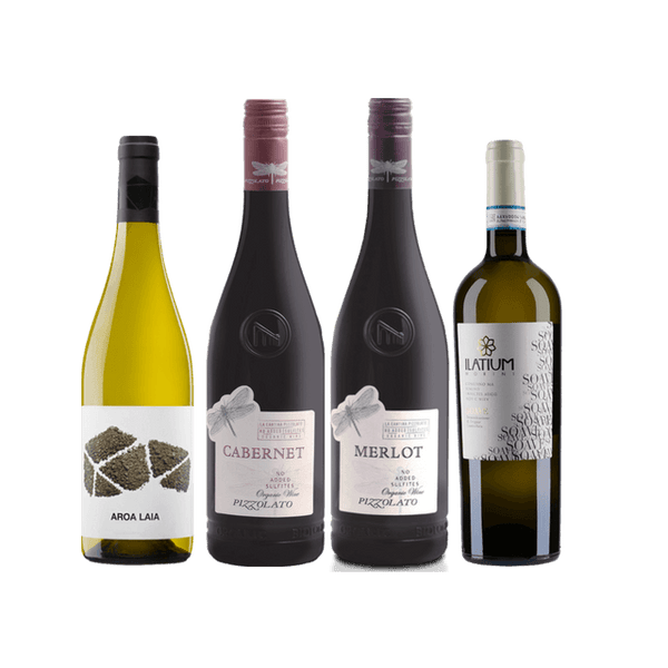 Strictly No Sulphites Added Wine Case | 8/12 Mixed Organic Wines