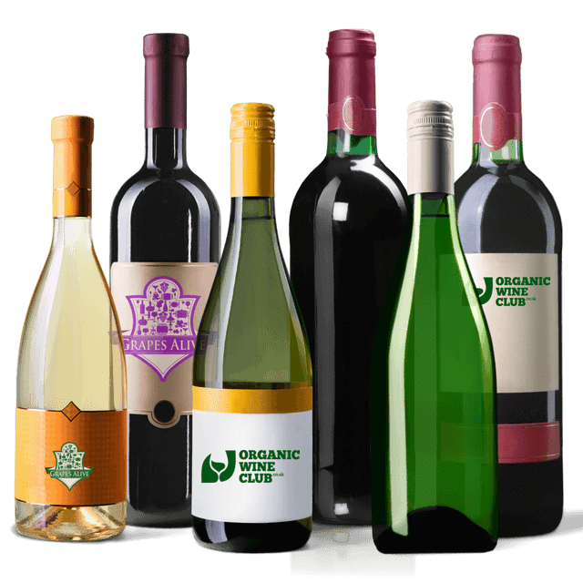 Organic Wine Club Mixed Case |  12 No Added Sulphites Wines | Red & White *