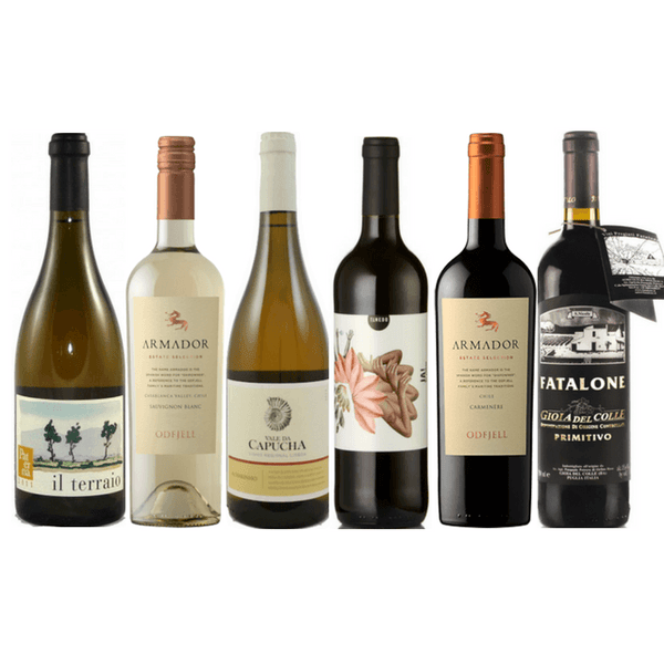 Taste of Organic Wine Club | Case of 6 Assorted Organic Wines