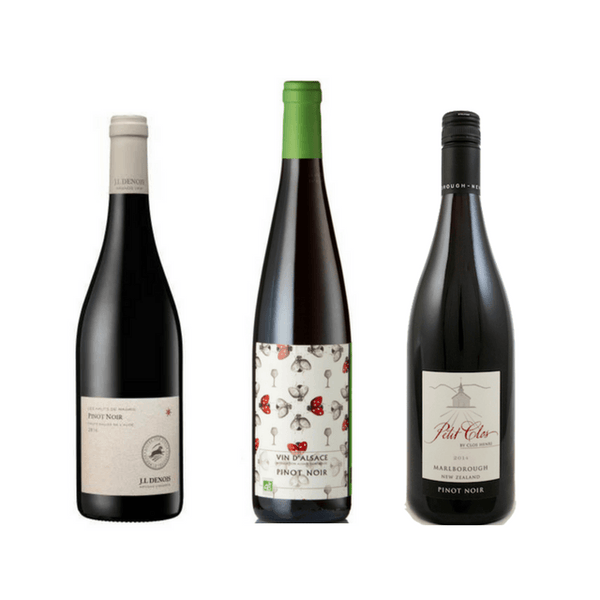 Taste of Organic Pinot Noir: Case of 6 Organic Pinot Noir Wines