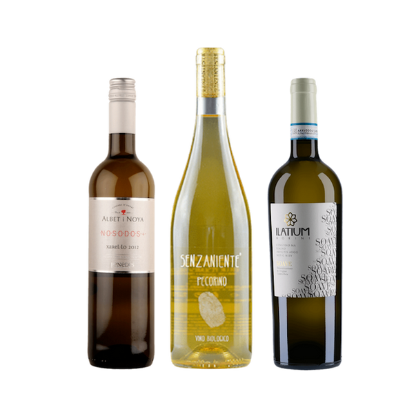 No Sulphites Added Wine Case | 6 Organic White Wines