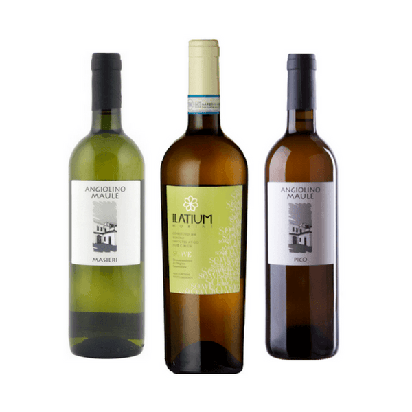 Organic Wine Tasting | 3 White Wines | Made from Garganega