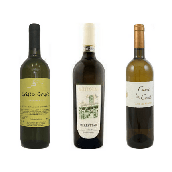 6 Sugar Free Wines | Organic Wines | Vegan Wine | White Wine Case