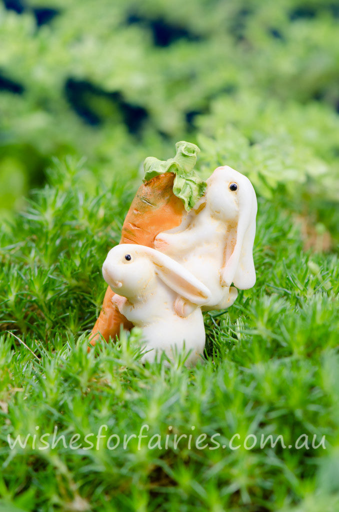 Rabbits Carrying Carrot