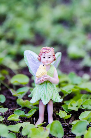 Fairy Kalea with Pet Chick