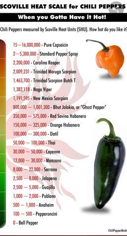 Chilli scoville scale