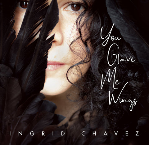 You Gave Me Wings - Single