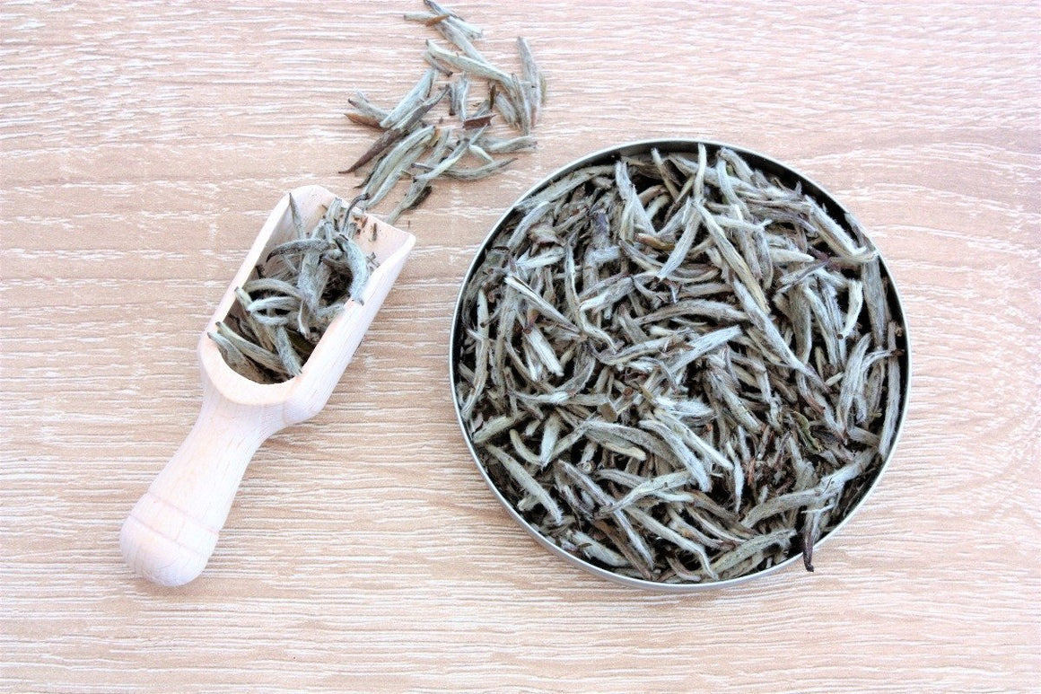 White Tea - Silver Needle