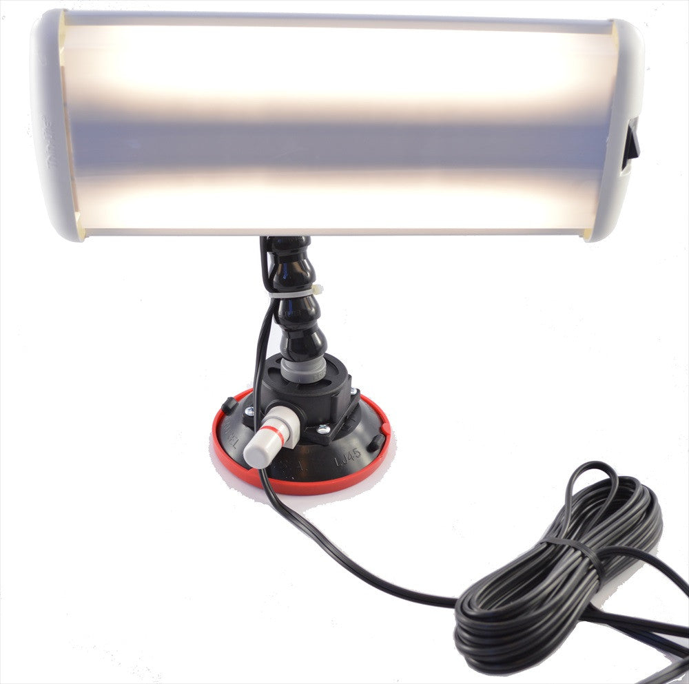 "12-Volt LED Thin-Light 12"" Long (LED-TL-12) (Made in USA)"