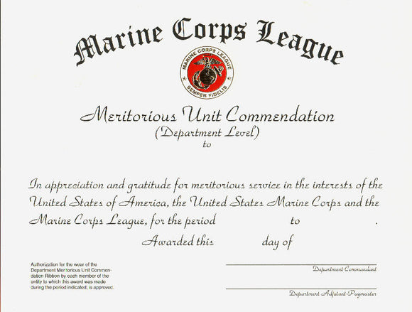 Meritorious  Unit Commendation - Department