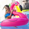 Pink Flamingo Ring Float
