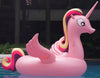 Pink Pony Float