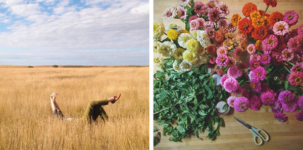 herbs for stress, herbs for anxiety, flowers, laying in a field