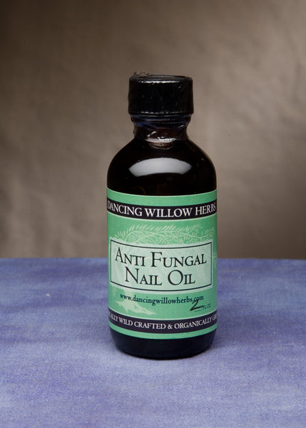 Anti-Fungal Nail Oil - Dancing Willow Herbs oil - herbal formulas