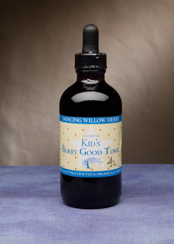 Kid's Berry Good Tonic - Dancing Willow Herbs Herbal Formulas - herbal formulas