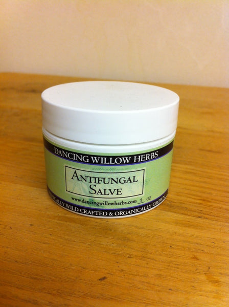 Anti-Fungal Salve - Dancing Willow Herbs Salve - herbal formulas