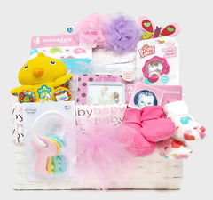 Welcome Home Birdie Baby Girl Gift Basket