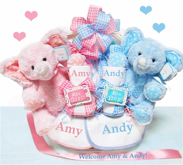 Double The Babies Blessings Twins Baby Gift Basket