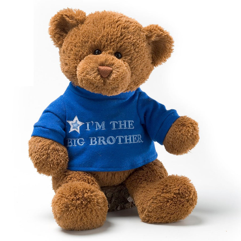 Big Brother Gund Plush Teddy Bear Sibling Gift