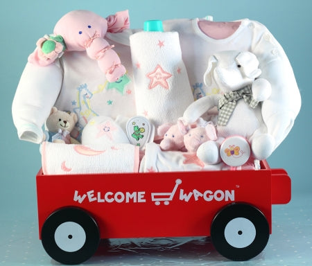 Moon Stars Deluxe Welcome Wagon Baby Girl Gift Basket