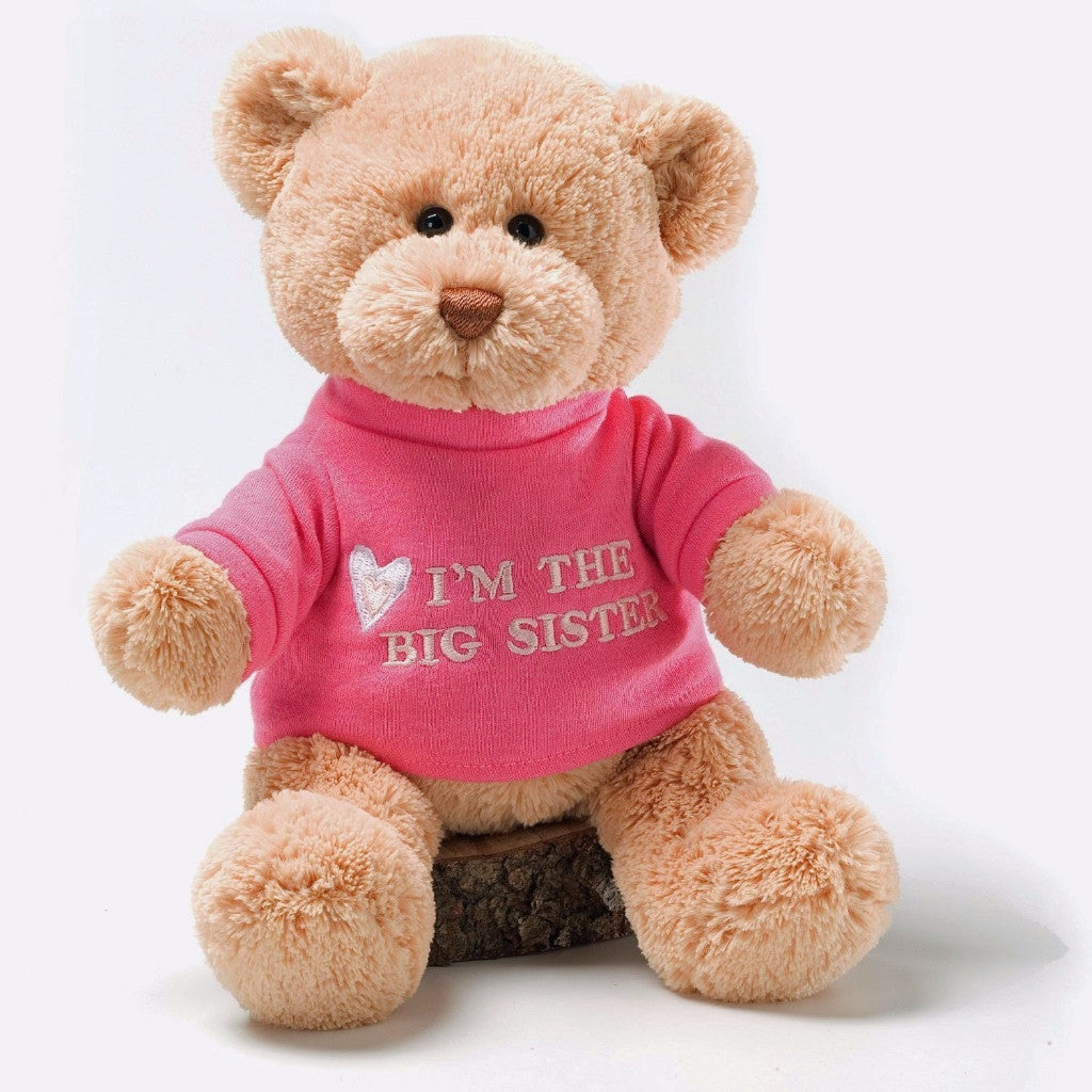 Big Sister Gund Plush Teddy Bear Sibling Gift
