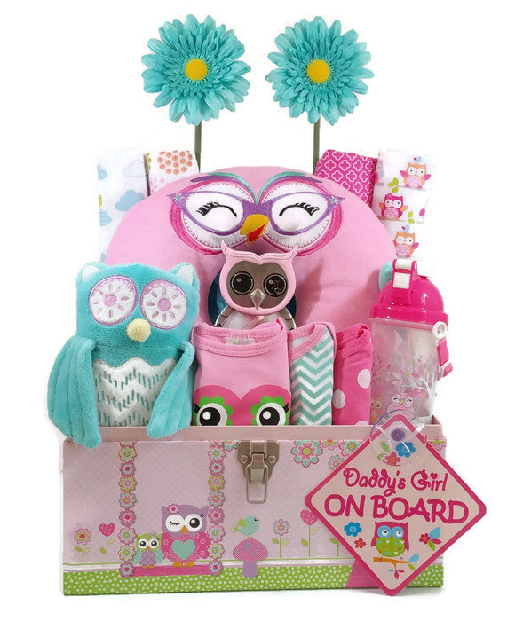 Custom made baby gift baskets baby shower as your baby grows gift owl eyes baby girl gift basket negle Image collections