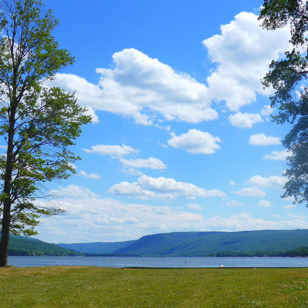 Honeoye, NY view of the lake in summer