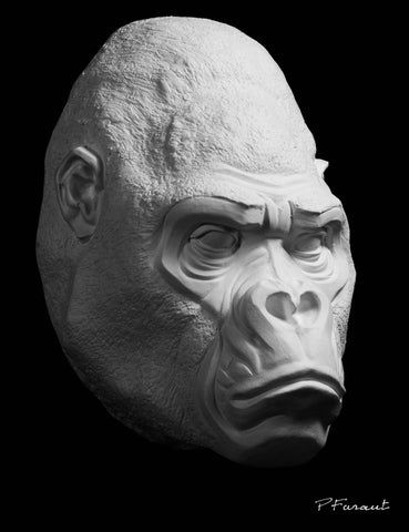 gorilla drawing cast, gorilla sculpture cast, gorilla mask, art reference cast, gorilla plaster cast for artist, gorilla anatomy, ape sculpture, ape mask, 3d animal reference