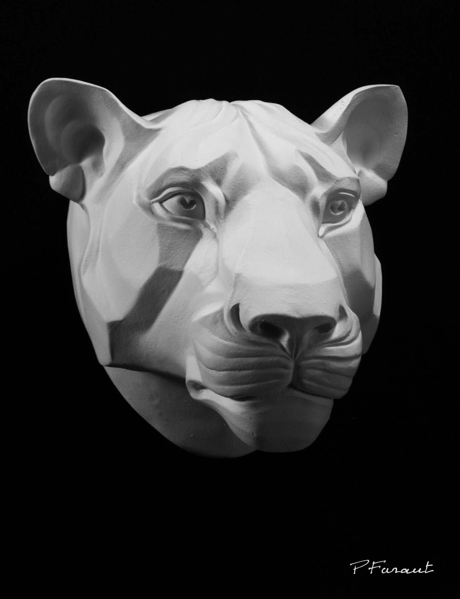 lioness drawing cast, lioness sculpture cast, lioness mask, art reference cast, lioness plaster cast for artist, lioness anatomy, 3d animal reference, cat mask, cat art reference, plaster cat mask